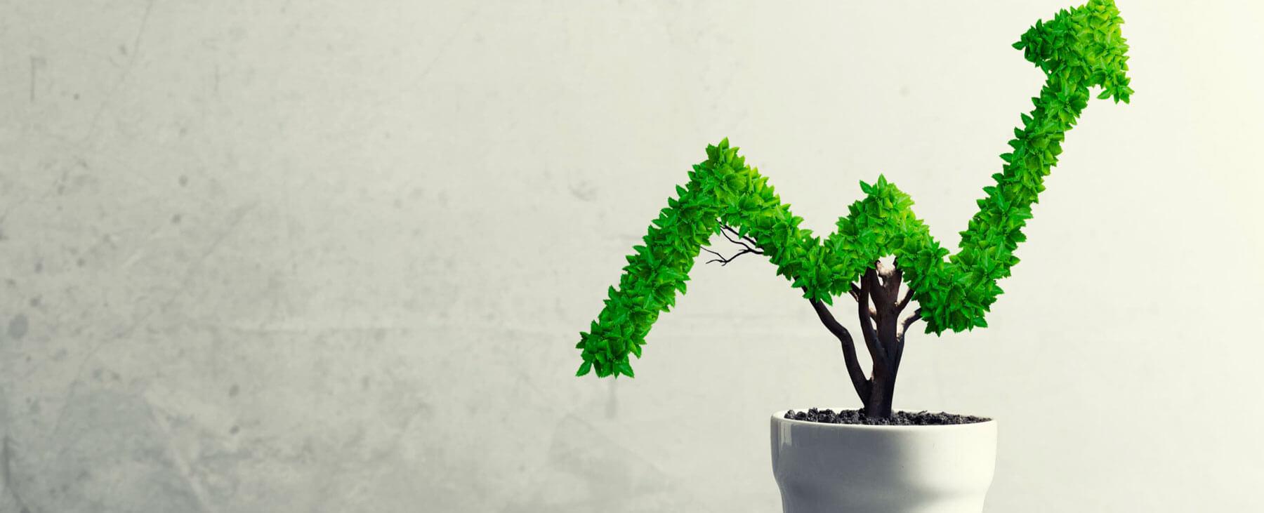 La inversión gira a la sostenibilidad