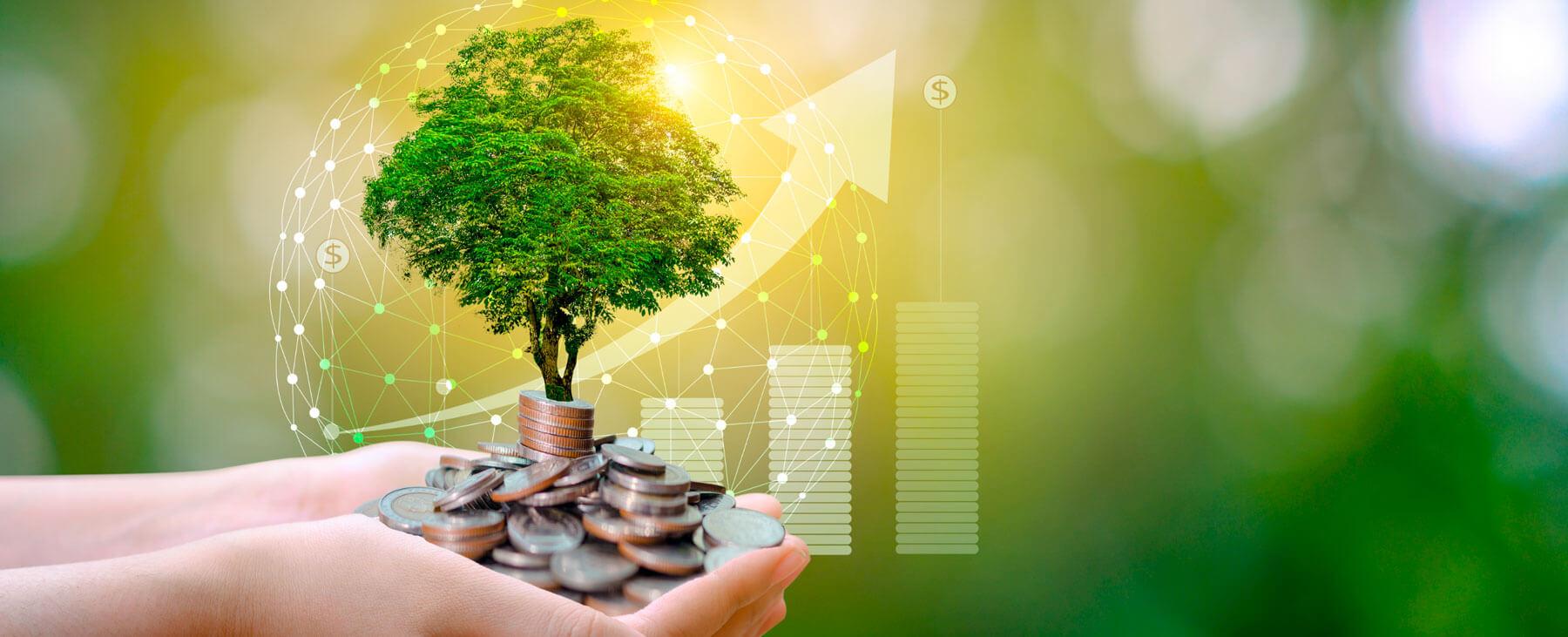 La inversión sostenible se acelera